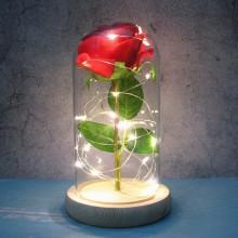 Rose lanterne